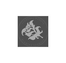 Stubborn Beauty Logo
