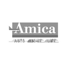 amica-20200915